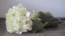 PTMD - Flower Imita witte hyndrangea (hortensia)