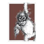 BDdesigns - Card Wildlife Orangutan
