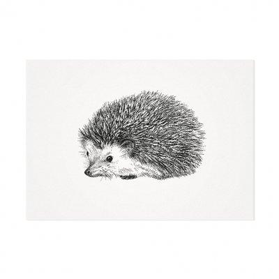 Mélisse - Card The Hedgehog