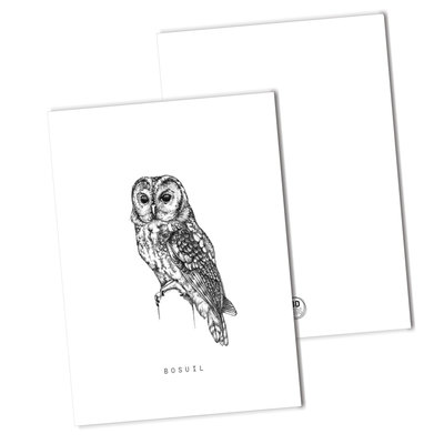 BDdesigns - Card Tawny owl