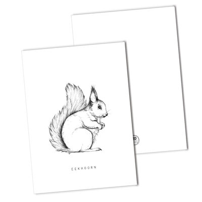 BDdesigns - Card Squirrel