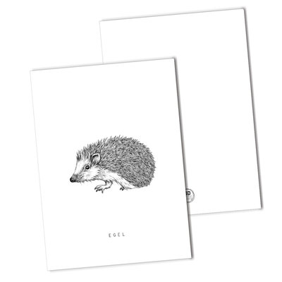 BDdesigns - Card Hedgehog