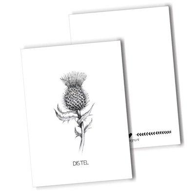 BDdesigns - Card Thistle