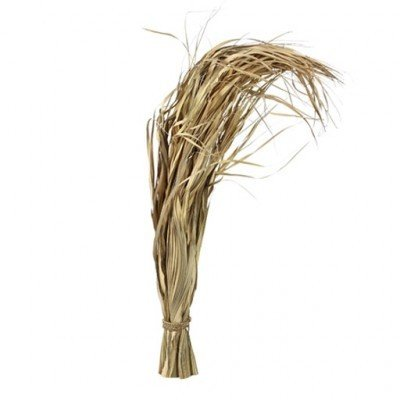PTMD - Dried flowers grass