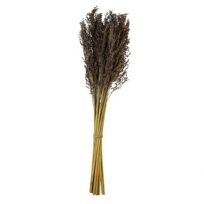 PTMD - Dried flowers lavender