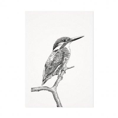 Mélisse - Card The kingfisher