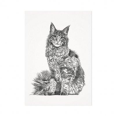 Mélisse - Card The Maine Coon
