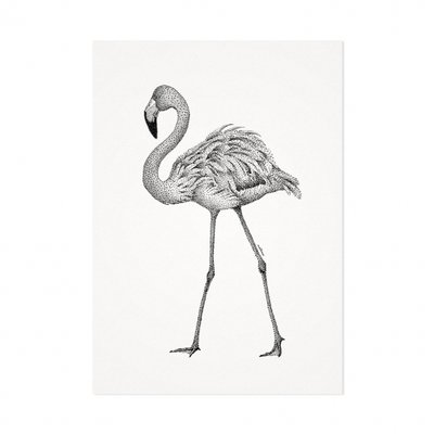 Mélisse - Card The red flamingo
