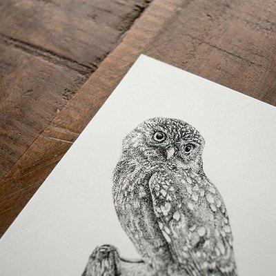Mélisse - Card The owl