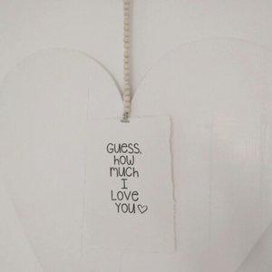 distelroos-Op-de-Maalzolder-4704153-Poster-Guess-how-much-I-love-you