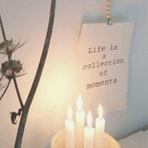 distelroos-Op-de-Maalzolder-4704155-Poster-Life-is-a-collection